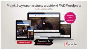 Strona wizytówka RWD WordPress